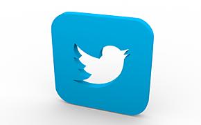 Waar twitteren Limburgers over?