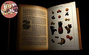 Lekker en gezond eten door de eeuwen heen